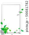 新緑-葉-白いフレーム-png-透過 56681782