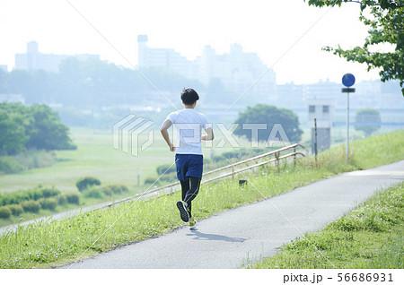 ランニング ランナー 男性 56686931