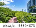 【東京都】東京ミッドタウン 56694673