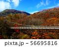 那須高原弁天吊り橋 56695816