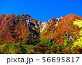 絶景紅葉の那須朝日岳 56695817