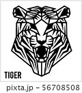 Abstract linear polygonal head of a Tiger. Vector. 56708508