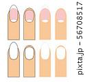 長い爪 短い爪 ベクター イラスト セット 56708517