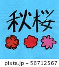 秋晴れ 秋桜 POP文字 イラスト 56712567