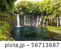 静岡白糸の滝 静岡県のパワースポット 日本の滝百選 56713687