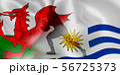 ウェールズ ウルグアイ ラグビー  国旗  56725373