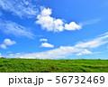 青空と草原/沖縄県 56732469