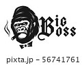 Big boss. Angry gorilla with a cigar. Vector illustration. 56741761