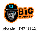 Angry gorilla head in the baseball cap on a dark background. Vector illustration. 56741812