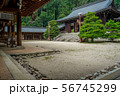 近江神宮 56745299