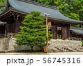 近江神宮 56745316