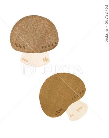 マッシュルーム(ブラウン) mushroom 56752763