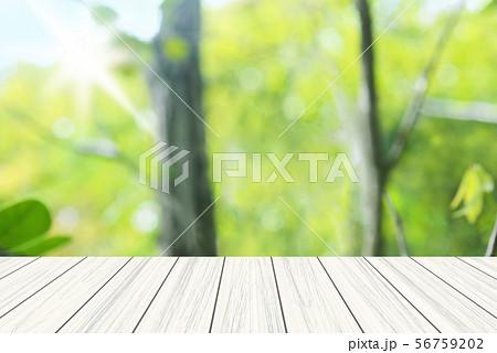 新緑 白木のウッドデッキ 56759202