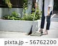 女性 庭掃除 掃除 玄関掃除 町内清掃 56762200
