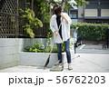 女性 庭掃除 掃除 玄関掃除 町内清掃 56762203