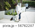 女性 庭掃除 掃除 玄関掃除 町内清掃 56762207