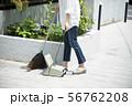 女性 庭掃除 掃除 玄関掃除 町内清掃 56762208