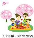 お花見をする家族 56767659