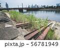 河川敷の貸しボート跡 56781949