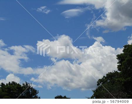 夏の青空と白い雲と 56794009