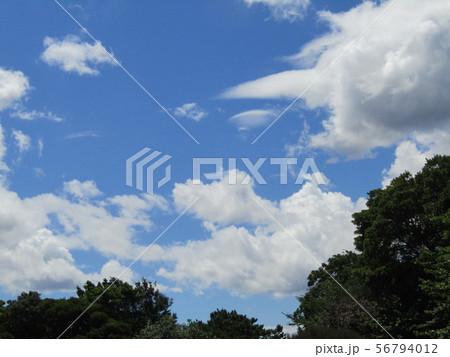 夏の青空と白い雲と 56794012