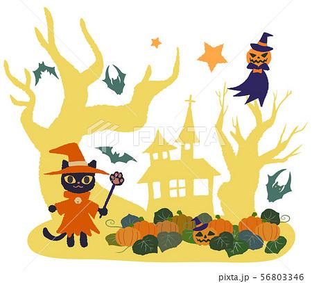 魔術師猫とカボチャ畑 木と家 お化けカボチャ 56803346