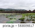 水上コテージ インレー湖 ミャンマー 56809817