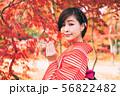 女性 着物 秋の写真 56822482