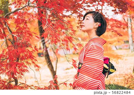 紅葉と着物の女性 56822484