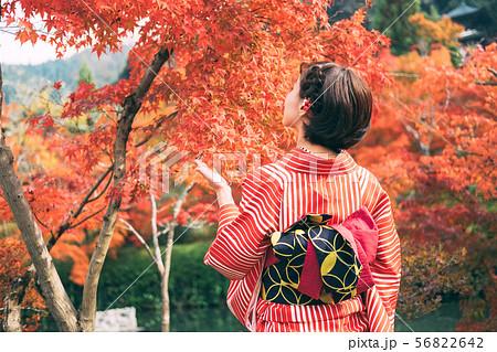 紅葉と着物の女性 56822642