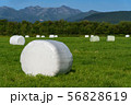 Haystack packed in white cellulose packaging field 56828619