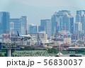 大阪の街並みと飛行機 大阪(伊丹)空港 56830037