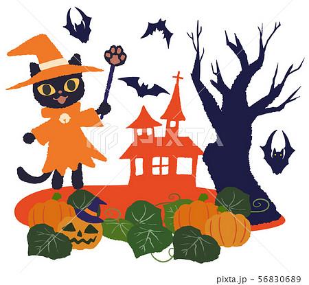 魔術師猫と家 カボチャ畑 56830689