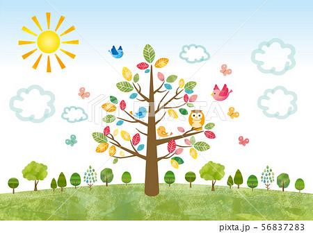 水彩風な大木と木々達 56837283