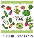 野菜のイラスト 手書き風 ベクター 56843719