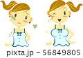 バストアップ 女子 before&after セット 56849805