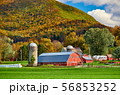 Farm with red barn and silos in Vermont 56853252