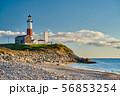 Montauk Lighthouse and beach 56853254