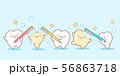 cartoon teeth holding toothbrush 56863718