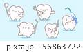 cute cartoon tooth with tool 56863722