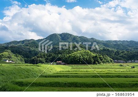 農村風景 56863954
