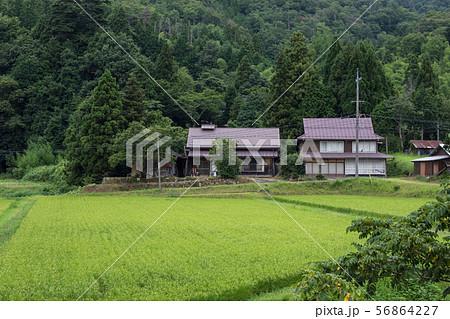 農村風景 56864227