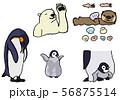 寒い地域の動物 水辺生物 56875514