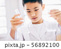 男の子 理科 勉強 56892100