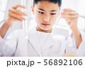 男の子 理科 勉強 56892106