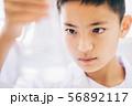 男の子 理科 勉強 56892117