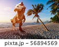 Graphic design dinosaurs model on the beach  56894569