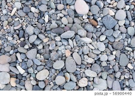 玉石の浜辺 静岡県沼津市千本浜海岸 56900440