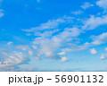 早朝の夏の青空 56901132