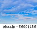 早朝の夏の青空 56901136